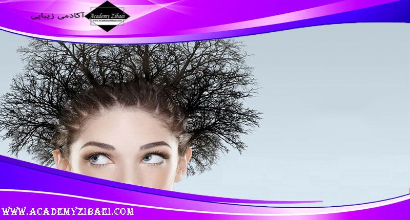 روش های مراقبت از و تقویت موهای خشک