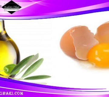 روغن زیتون و تخممرغ برای نرم شدن مو 👧