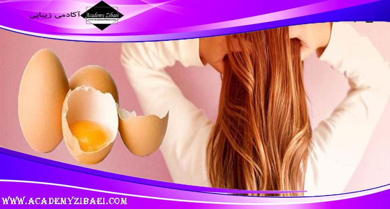 نحوه استفاده از زرده تخم مرغ برای درمان مو
