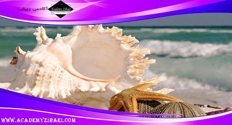 کلاژن دریایی یا MARINE COLLAGEN چیست؟